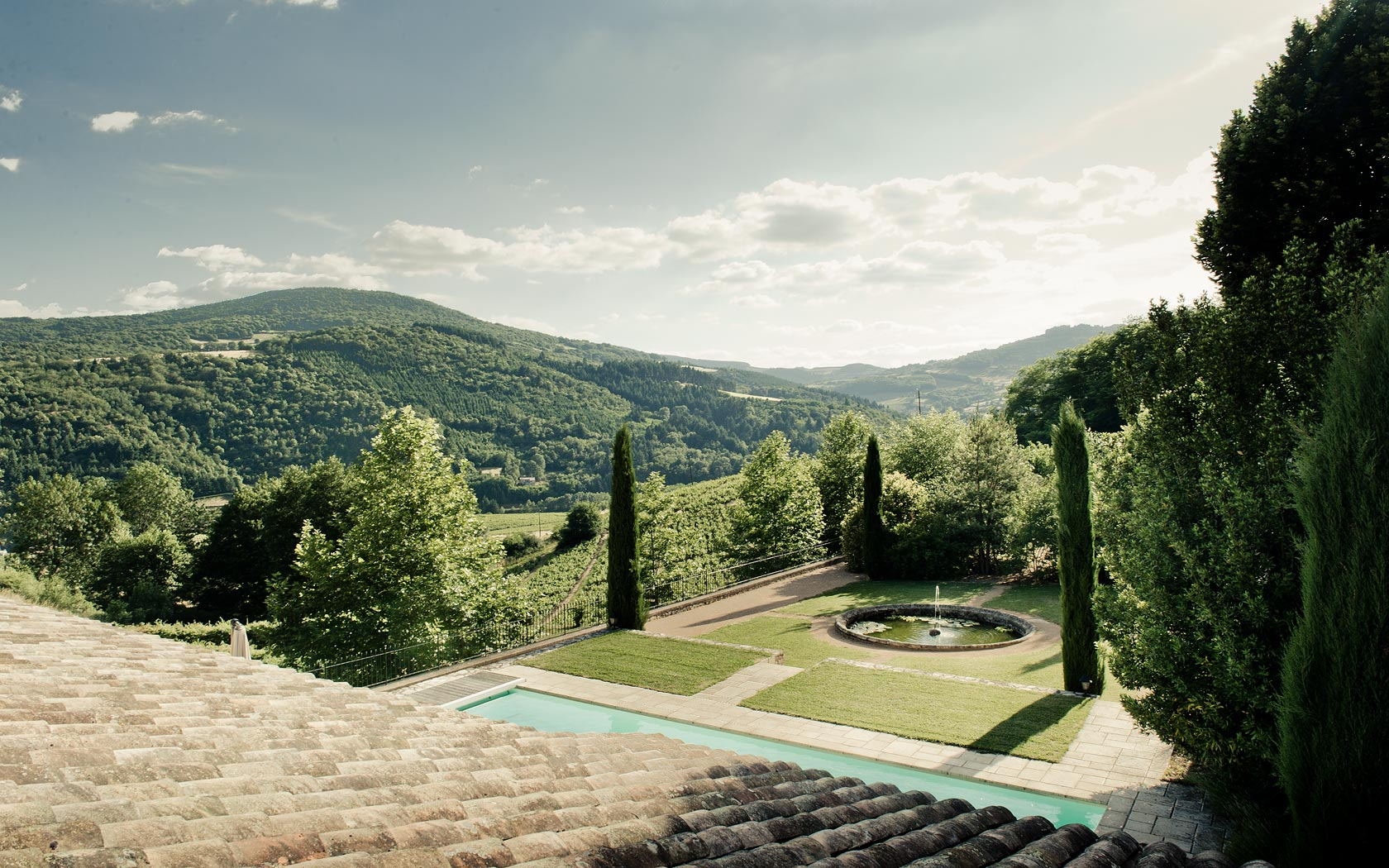 La vue magnifique sur les vignes et collines