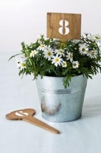 Numéro de table - Photo www.botaniqueeditions.com